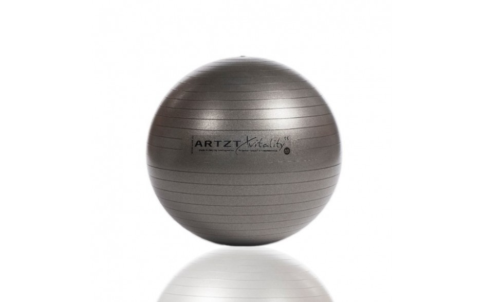 ARTZT vitality Fitness-Ball Professional, 65 cm/anthrazit
