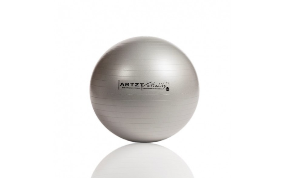 ARTZT vitality Fitness-Ball Professional, 55 cm/silber